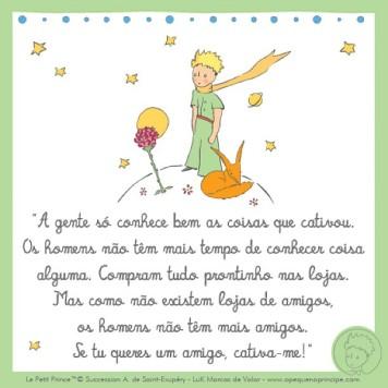 uma das lições mais belas do Pequeno Príncipe